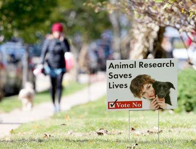 Mount Horeb referendum on animal rights-web photo