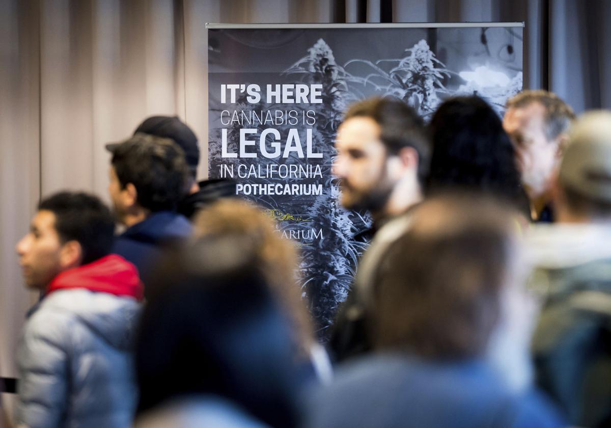Legal Marijuana Banner Year