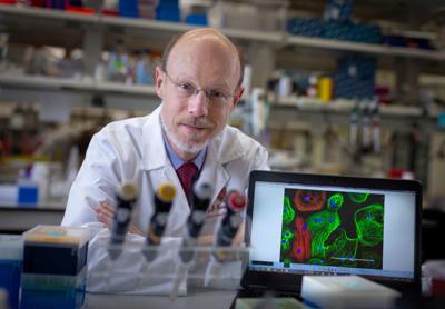Dr. Timothy Kamp