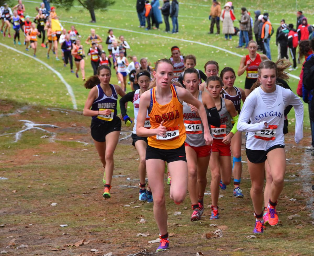 WIAA state cross country photo: Janesville Craig's Peyton Sippy