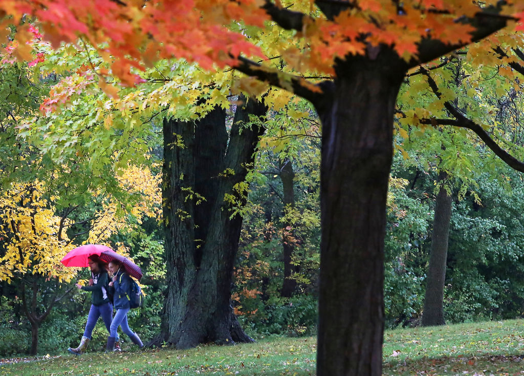 Autumn Rain In Wingra Park >> Autumn Splendor Some Of Our Best Fall Color Photos Local News