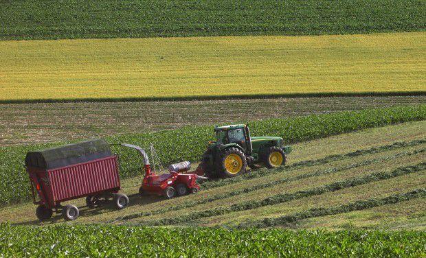 Dane County cropland