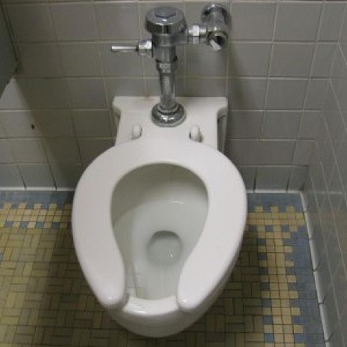 3 000 To Replace A Single School Toilet Local Education Madison Com