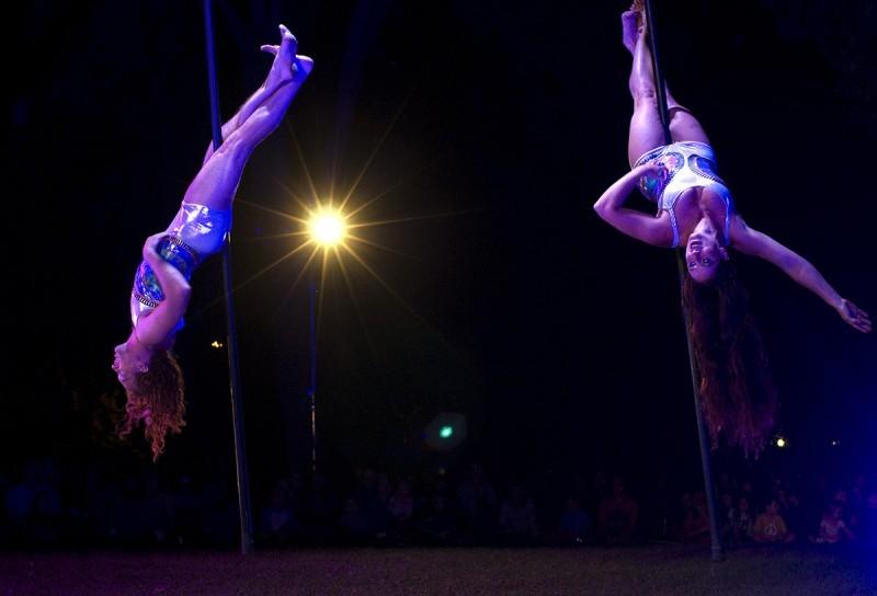 Cycropias Performance At Orton Park >> Cycropians Dance Under The Canopy In Volando Entertainment
