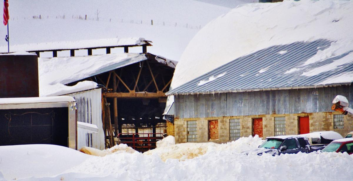 Farms reeling from late February storm that wrecked barns ...