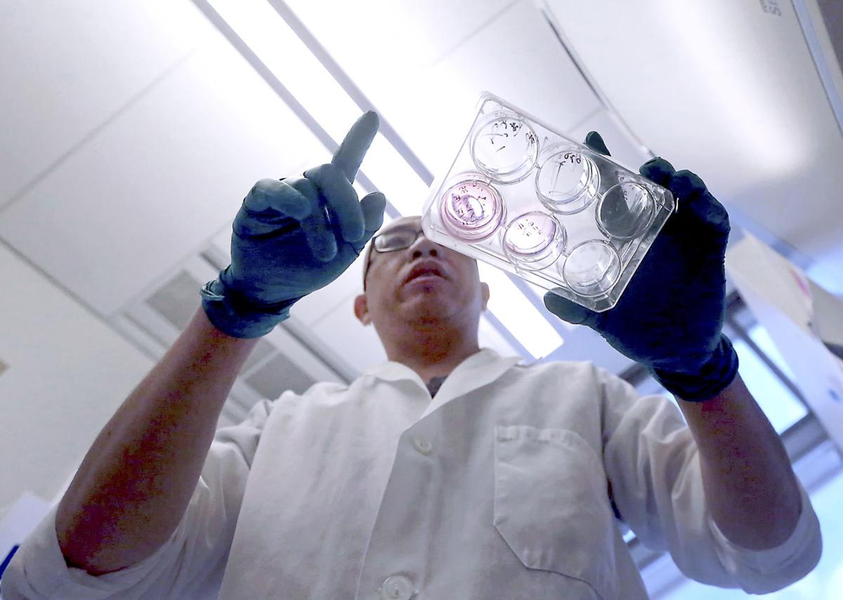 Jue Zhang with cell culture dish