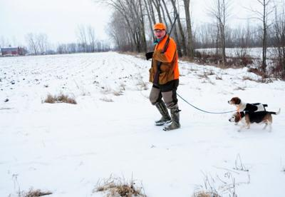 Patrick Durkin: Good beagles equal great rabbit hunt | Outdoors