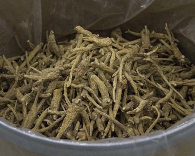 Cleaned ginseng
