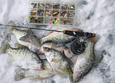 Mixed bag of panfish