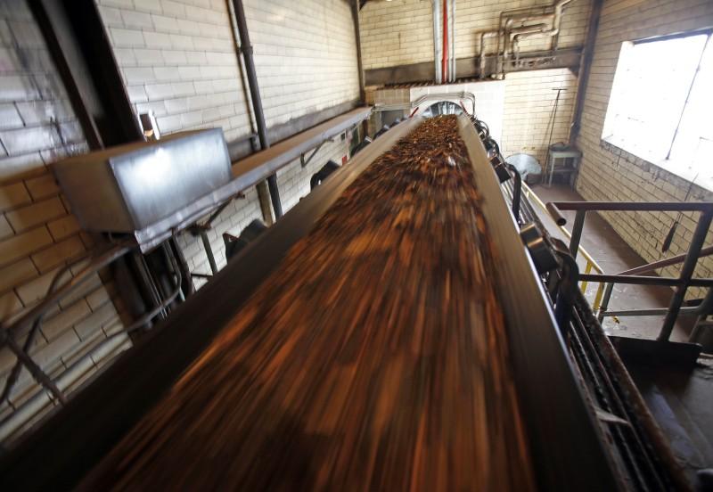 Cassville wood biomass power plant, conveyors transport wood fuel