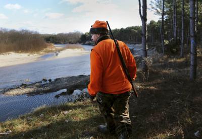 Deer hunt for spring hearings