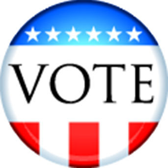 Election icon