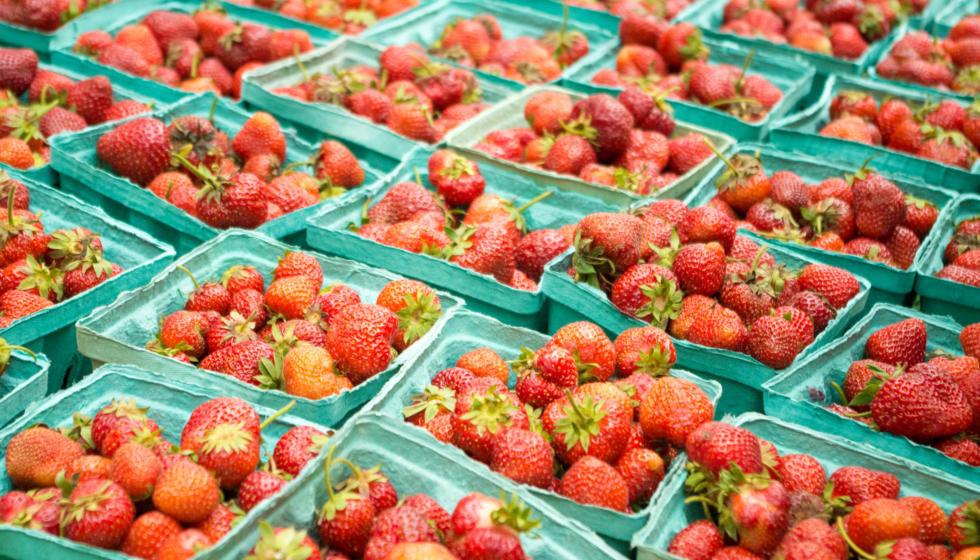 Strawberries at Dane County Farmers' Market