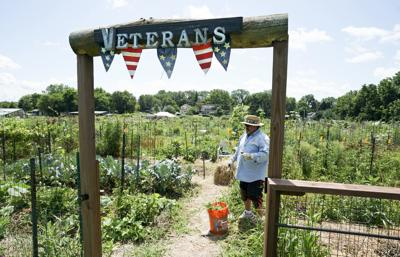 Sustainable gardening programs creates community for local veterans