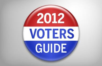 voters guide button