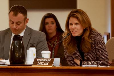 Chris Taylor at budget hearing