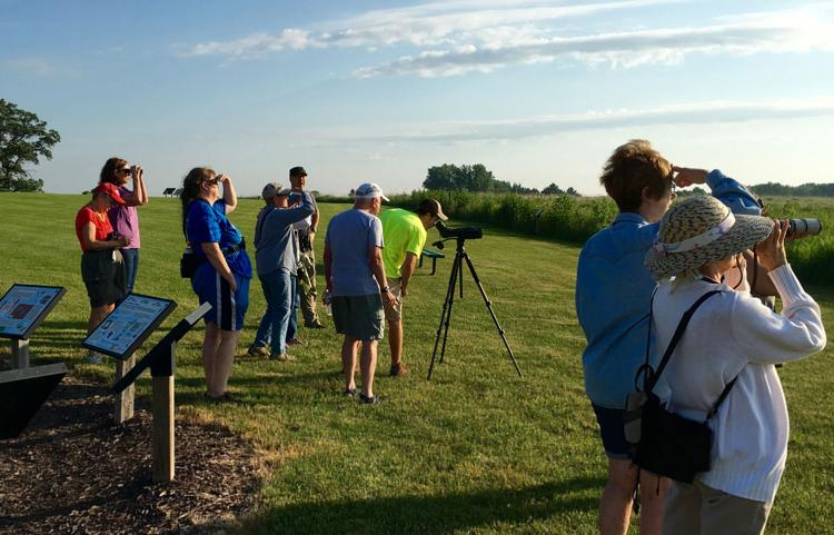 Birding Tour at Pope Farm Conservancy