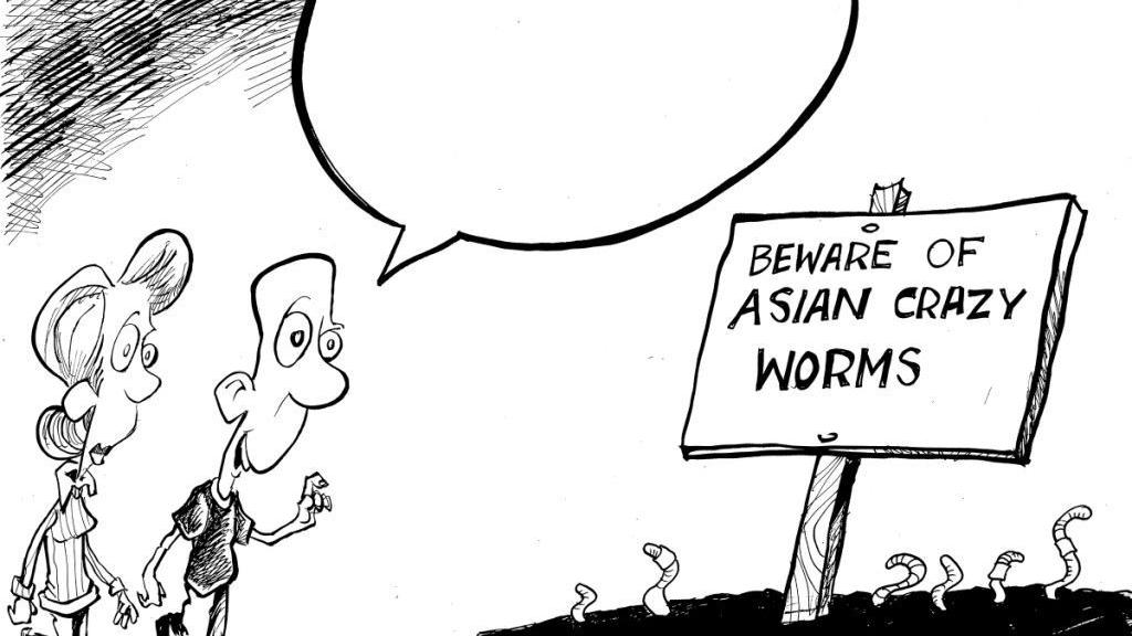 Asian crazy worms squirm into this week's You Toon caption contest