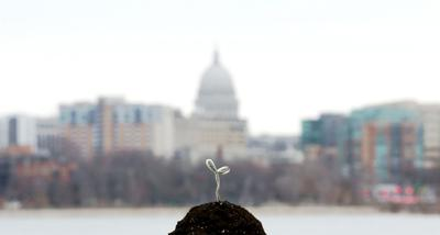 Seed money: Madison has become fertile ground for venture capitalists