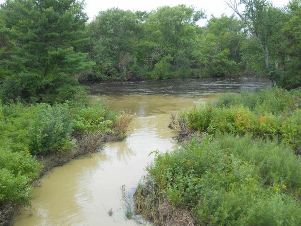 Clouded creek