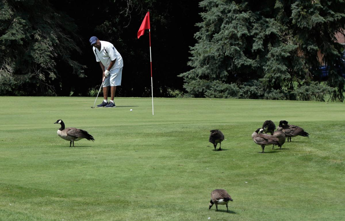 Monona Golf Course could close to help pay for renovations at Yahara Hills