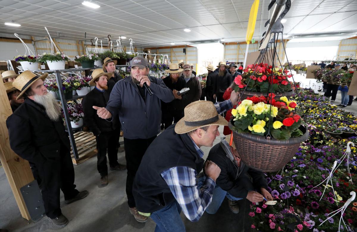 Platteville Produce Auction