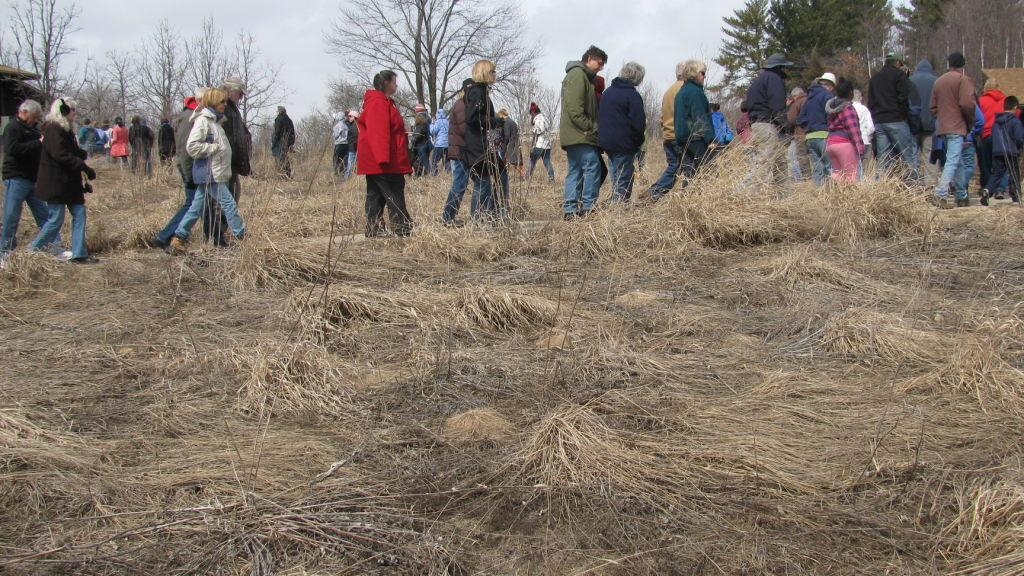 Dregs Of Winter In Madison >> Around Town Uw Arboretum Shows Signs Of Spring Local News