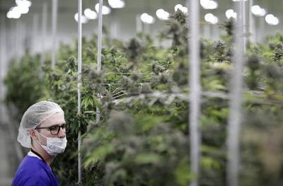 Nevada launches sales of legal recreational marijuana (copy)