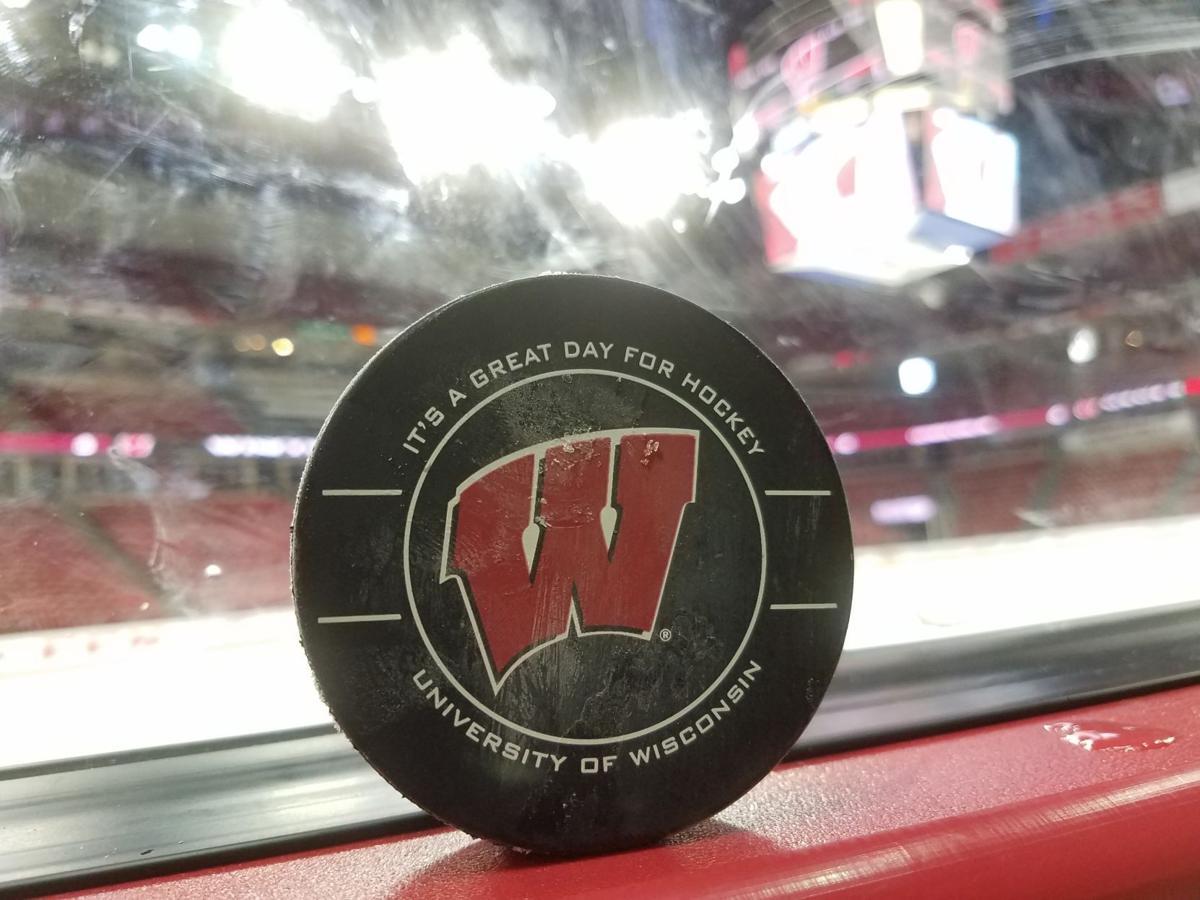 UW hockey puck 3