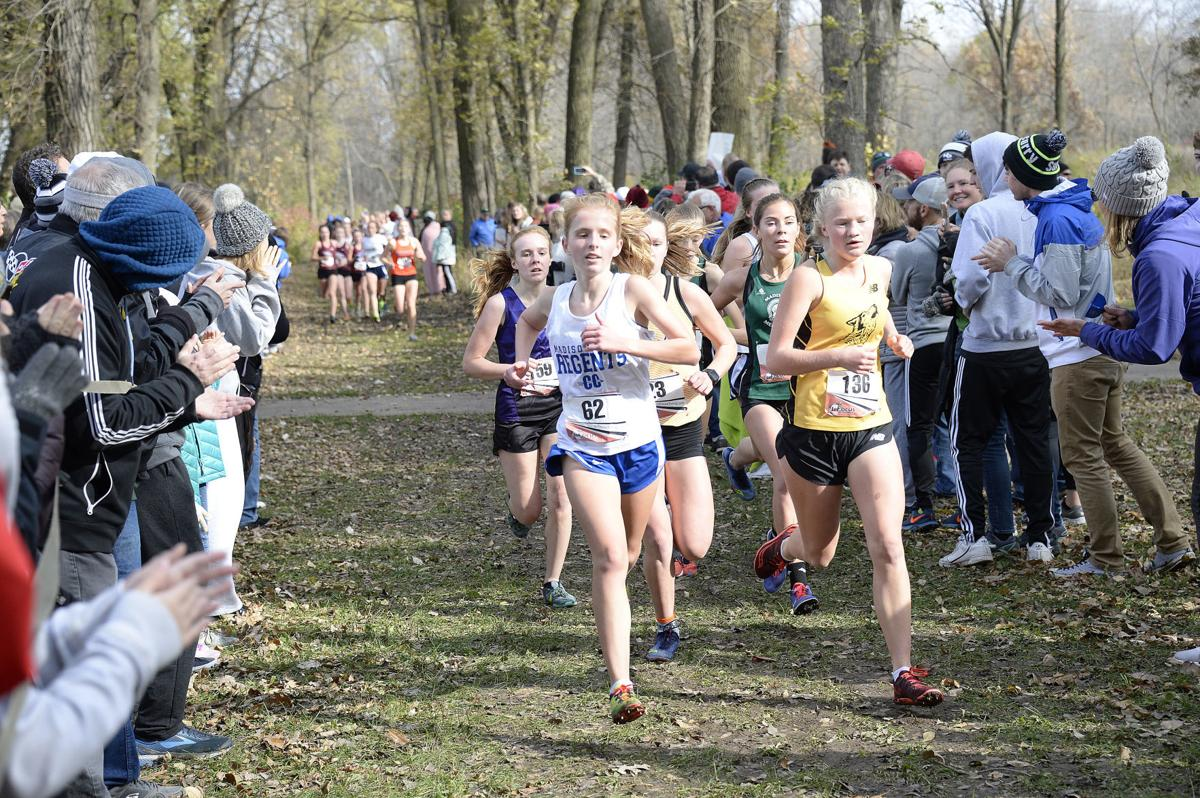 Wisconsin-WIAA-Division-1-cross-country-xc-sectionals-07-H4X0146-10262019154757