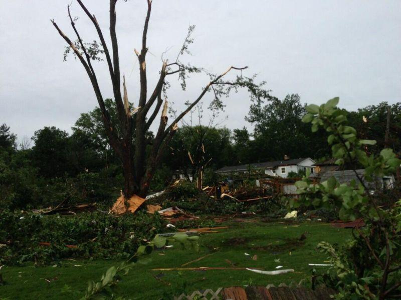 Backyard destroyed