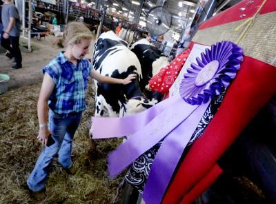 Dane County Fair1