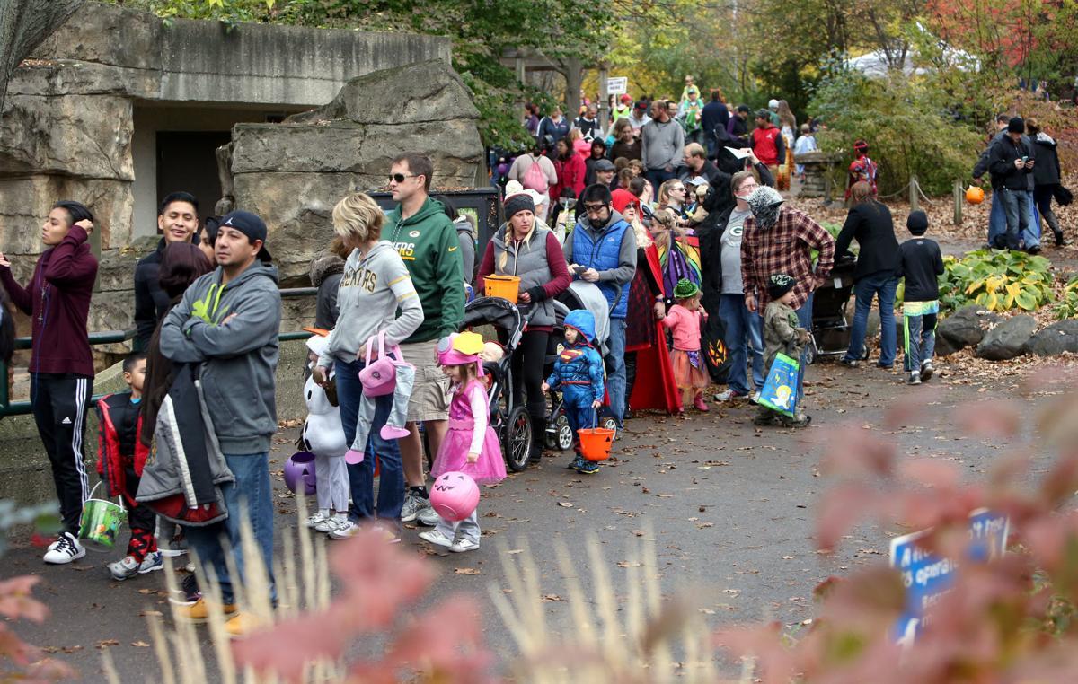 Halloween at zoo