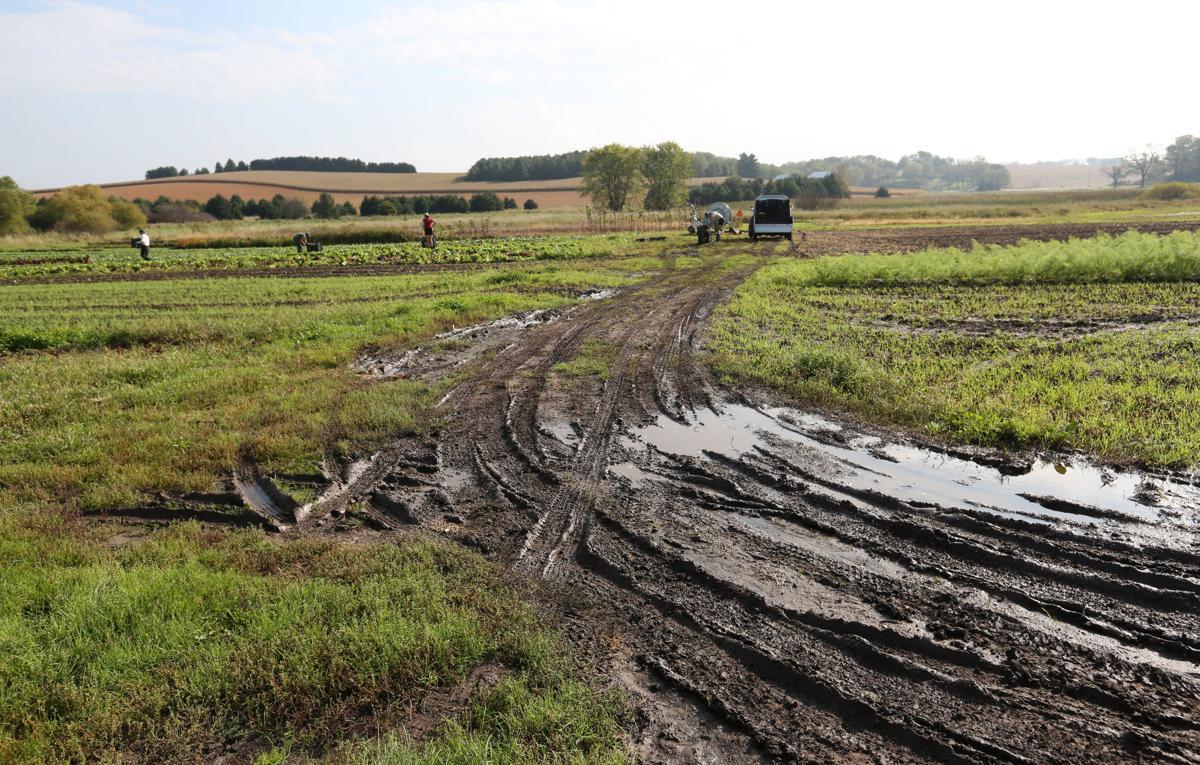 CROSSROADS COMMUNITY FARM