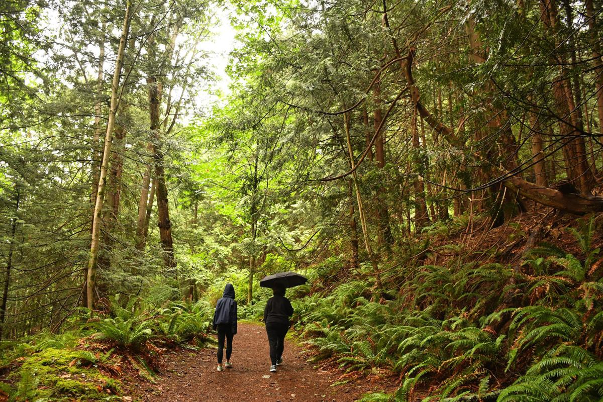 The Dorman Point Trail in Crippen Regional Park on Bowen Island in British Columbia, Canada.