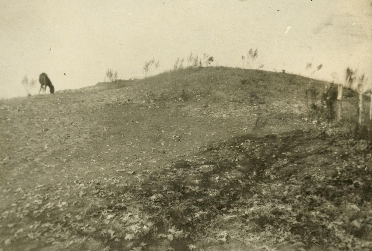 Crest of the Dividing Ridge
