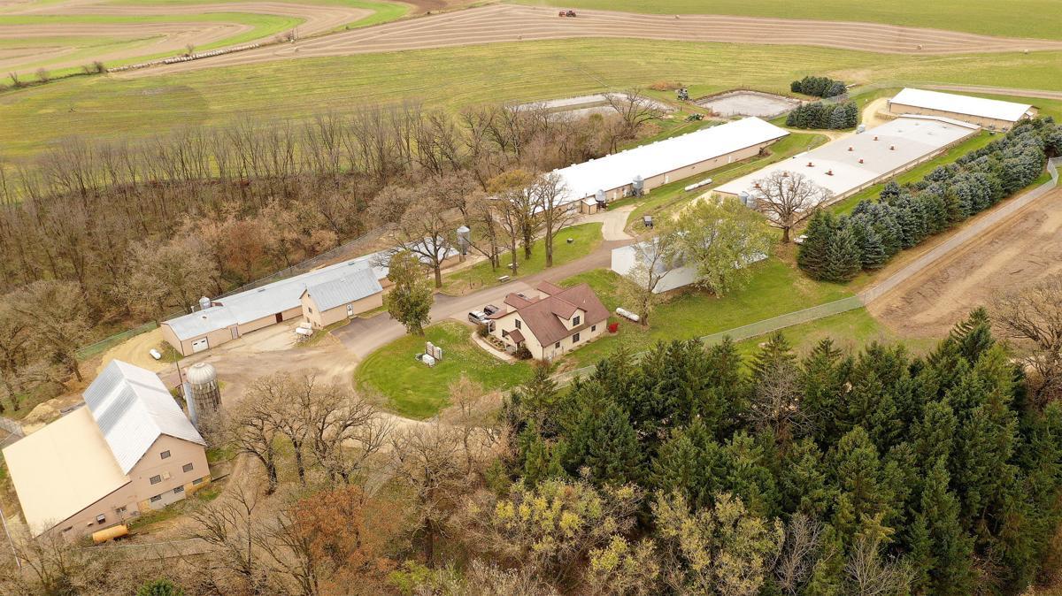 Ridglan Farms