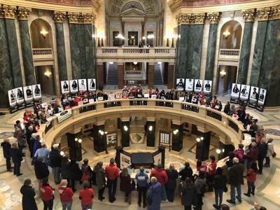 Capitol Gun Control Advocates