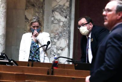 Wisconsin Legislature masks (copy)