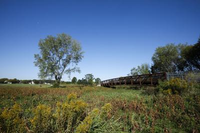 County Grove Park