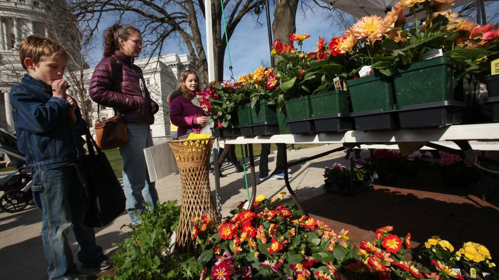 The Corner Table podcast: Farmers market indefinitely postponed