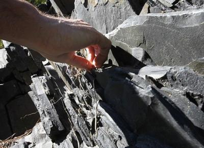 Magnetite outcropping