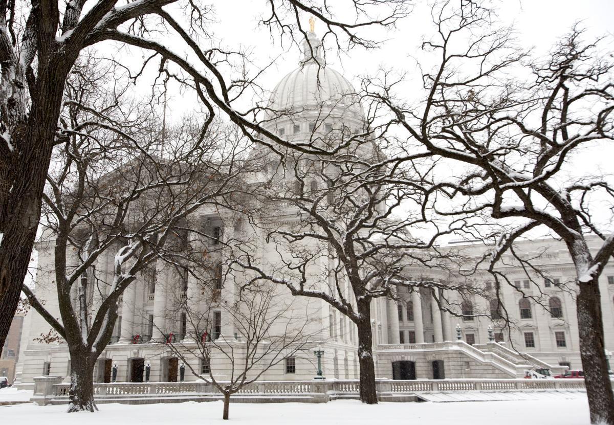 snow on capitol building (copy)