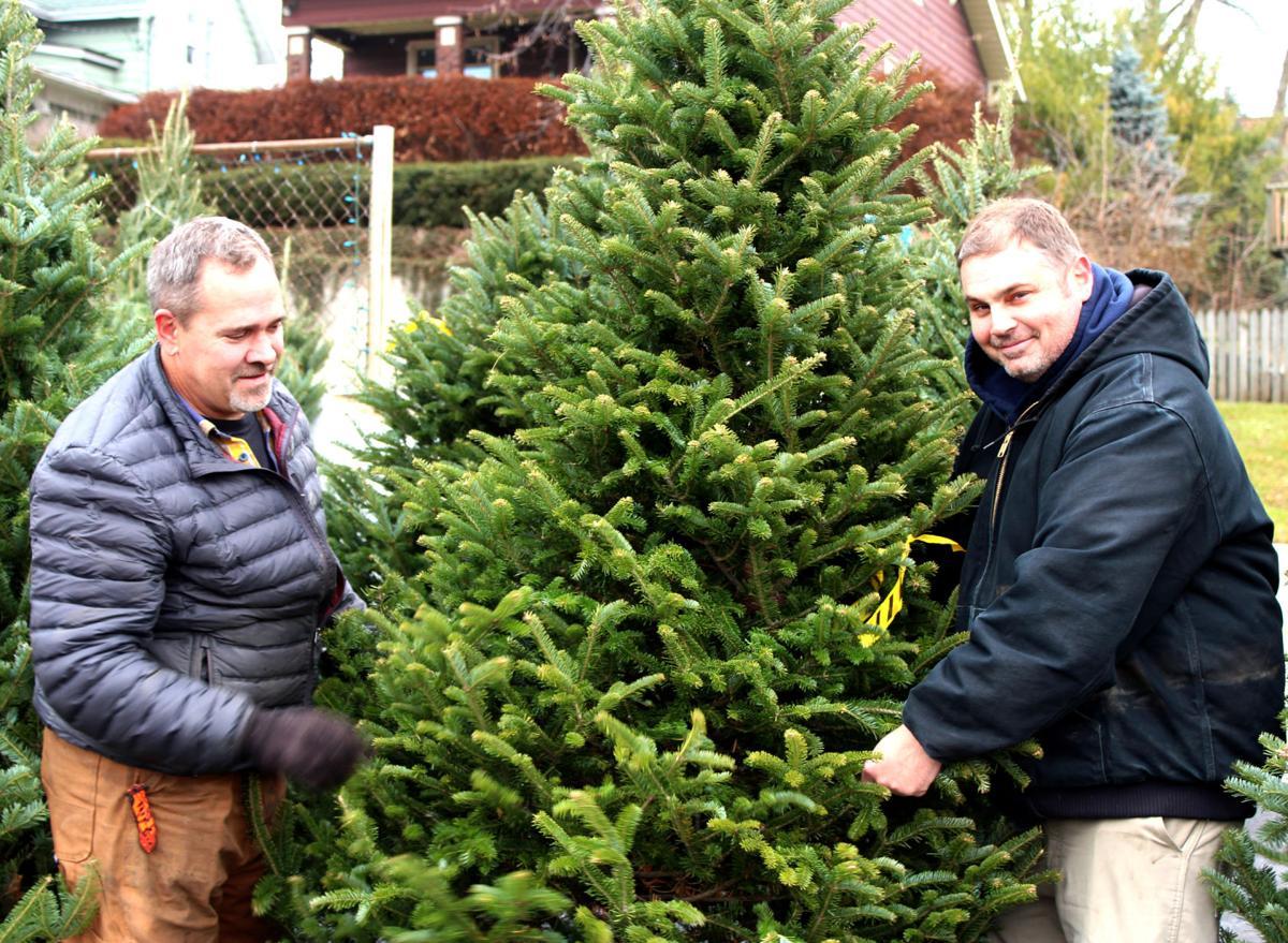 CHRISTMAS TREE FORECAST 2019