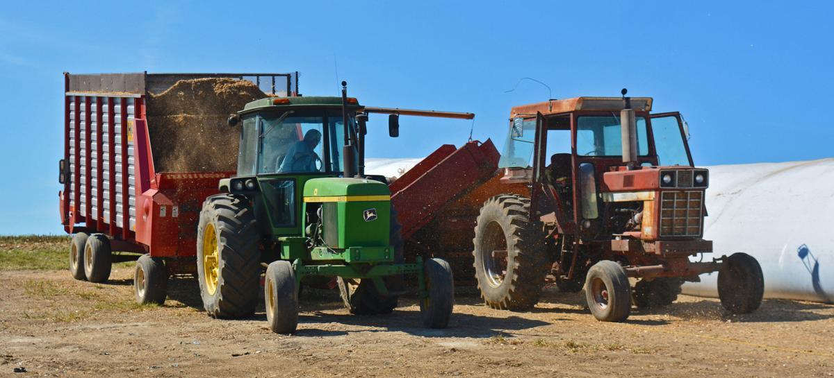Jack Hass unloads corn silage (copy)