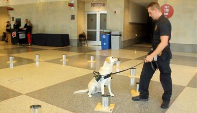Madison hosts national training for K-9 explosives detection