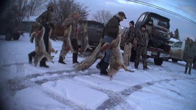 Coyote-killing contest