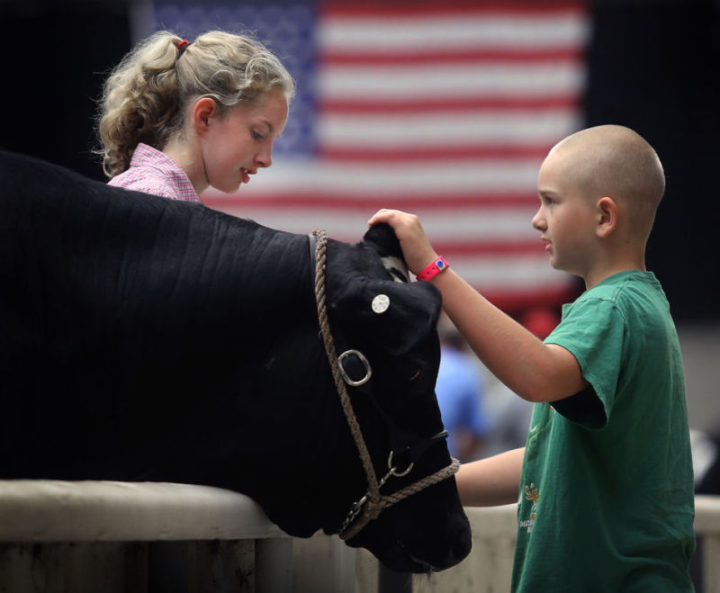 Dane County Fair Opened Tuesday Night >> Photos Dane County Fair Opening Day Local News Madison Com