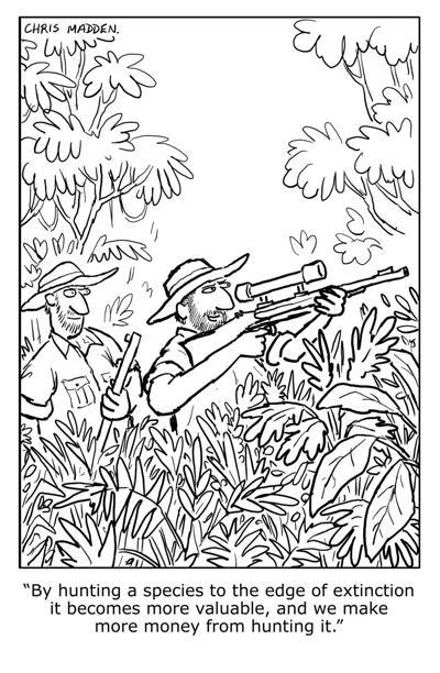 Chris Madden cartoon