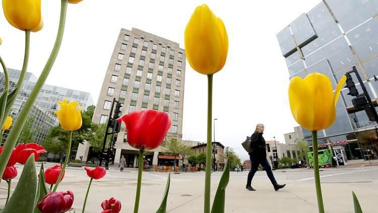 The Week In Photos: Capitol Tulips, Edgewood College and more
